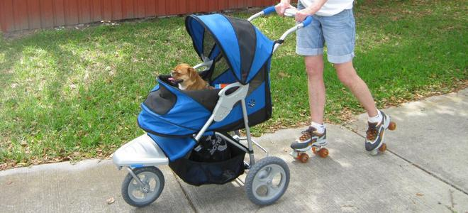 slider 2 www.dog-strollers.co.uk
