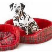 dog beds gifts for Valentines Day