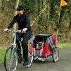 cycle trailers for your dog