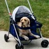 get the correct sized pet stroller for your dog