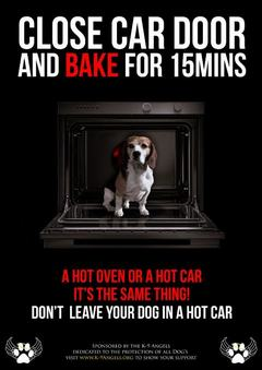 Car Heat for dogs poster