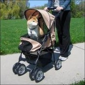 a dog stroller can keep your pet cool on a hot day