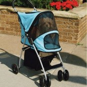 keep your dog secure inside the stroller when you begin going outside