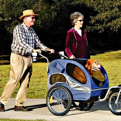 Seniors with a dog stroller