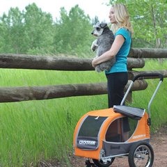getting about with a pet stroller