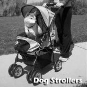 Click here for Dog Strollers