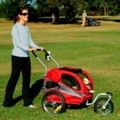 converting a bicycle dog trailer into a puppy stroller, using a conversion kit, is ideal for a young puppy