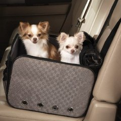 dogs safely secured in a car carrier
