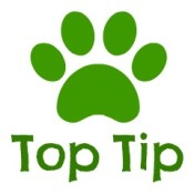 top tip from www.dog-strollers.co.uk