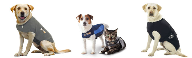 anxiety wraps and thundershirts are great to calm down your pet