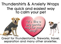 Click here for more information on Thundershirts and Anxiety Wraps for your dog
