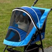 a pet stroller provides a safe and roomy enclosure for your cat