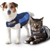 Thundershirts and anxiety wraps are a great investment for your dog or cat