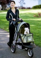 a pet jogger is perfect for when you jog or exercise