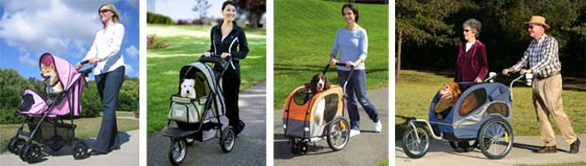 Fitness facts and tips about walking with a dog stroller