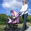 Fitness facts and advice about walking with a dog stroller
