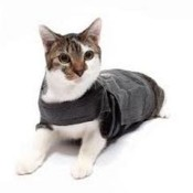 Thundershirts and Anxiety Wraps are perfect for cats too