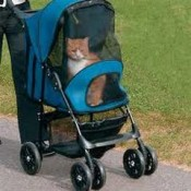 invest in the correct pet stroller for your usage
