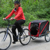 Fitness facts about cycling with a bicycle dog trailer