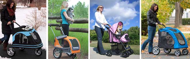 Dog Strollers: The all year round protection for your dog