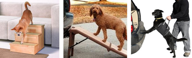 Dog mobility steps, ramps and lifting harnesses designed for your pet