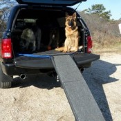 A dog ramp can be used and then folded and stored in your car