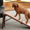 a free standing dog ramp is perfect for the car, home and garden