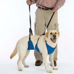 a multifunction dog lifting harness can be used on the dogs front, rear or whole body