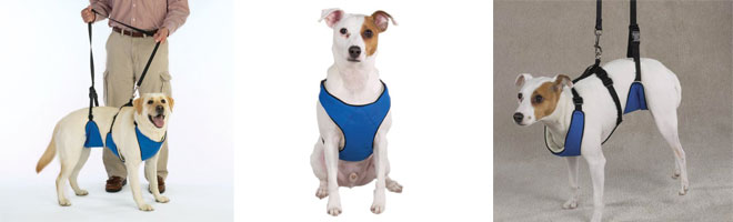 multifunctional dog lifting harnesses are designed for medium and large sized dogs