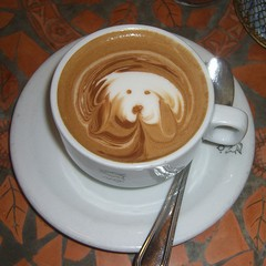 dog friendly cafes in england_240