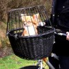 Tips on how to train your dog to ride in a bike basket or cycle carrier