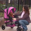 The advantages of having a dog stroller